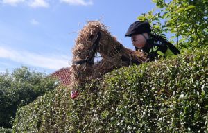 A great horse and jockey scaling a six-foot hedge in Copmanthorpe Lane.